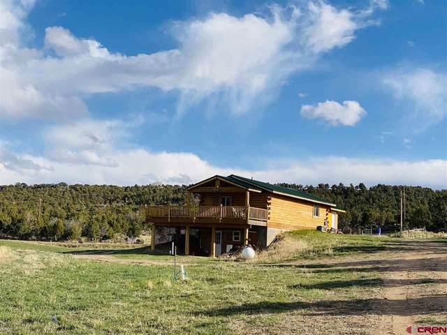 37569 Fruitland Mesa Road, Crawford, CO 81415 (MLS #766884) :: The Dawn Howe Group   Keller Williams Colorado West Realty