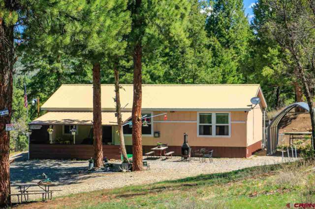 101 W Beucler Lane, Pagosa Springs, CO 81147 (MLS #741424) :: CapRock Real Estate, LLC
