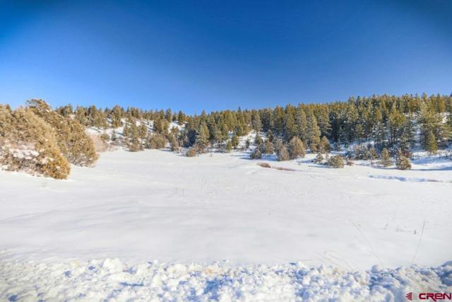 365 Bradley Place, Pagosa Springs, CO 81147 (MLS #751431) :: Durango Home Sales