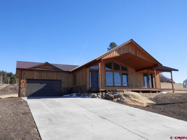 233 Incline Circle, Pagosa Springs, CO 81147 (MLS #736169) :: CapRock Real Estate, LLC