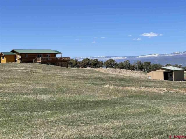 37569 Fruitland Mesa Road, Crawford, CO 81415 (MLS #766884) :: The Howe Group   Keller Williams Colorado West Realty