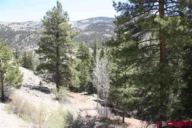 1852 Rocky Springs Drive, Lake City, CO 81235 (MLS #2023) :: The Dawn Howe Group | Keller Williams Colorado West Realty