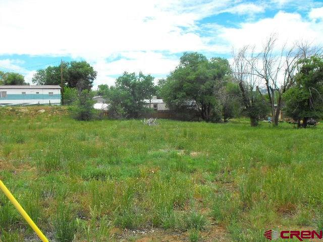 1060-1082 Mildred, Cortez, CO 81321 (MLS #713716) :: CapRock Real Estate, LLC