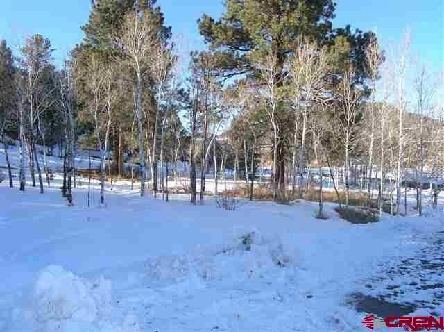 640 Conifer, South Fork, CO 81154 (MLS #716371) :: Durango Home Sales