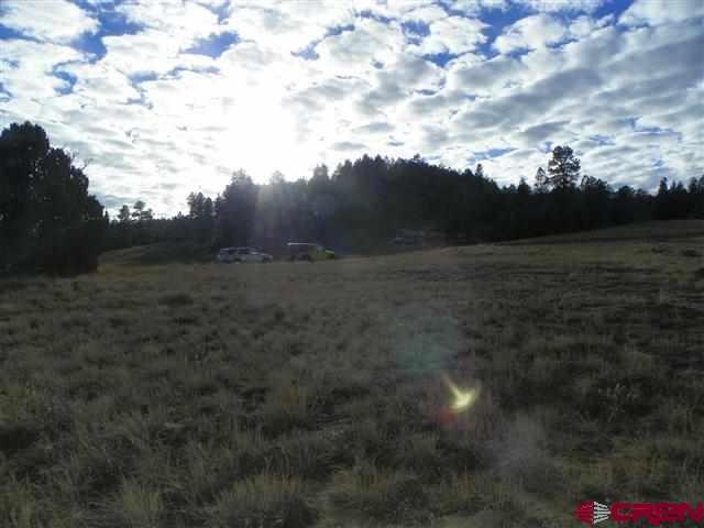 Lot 5 Shooting Star, Pagosa Springs, CO 81147 (MLS #718659) :: CapRock Real Estate, LLC