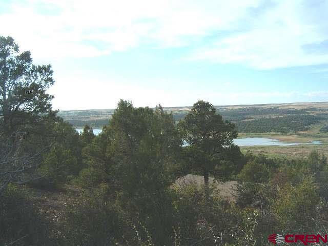 24991 Road V.4 Lot #1, Dolores, CO 81323 (MLS #719344) :: Durango Home Sales
