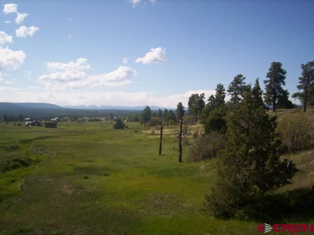 828 Dichoso Street, Pagosa Springs, CO 81147 (MLS #722776) :: Durango Home Sales