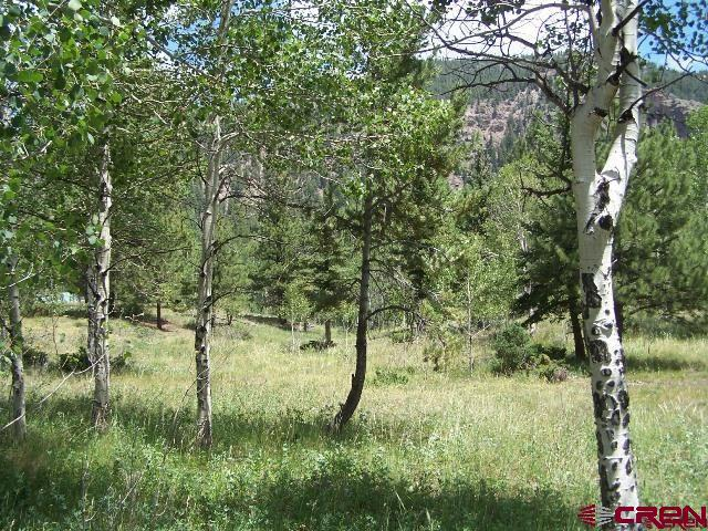 23 River Run, Antonito, CO 81120 (MLS #726594) :: Durango Home Sales