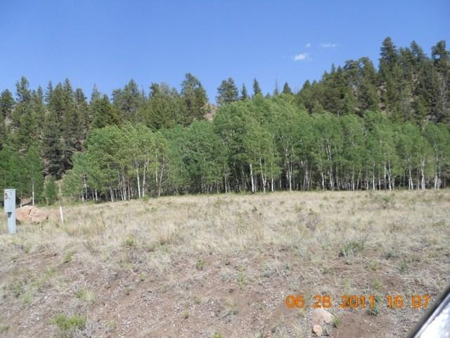 Lot 12 Red Bluff Dirve, South Fork, CO 81154 (MLS #726831) :: Durango Home Sales