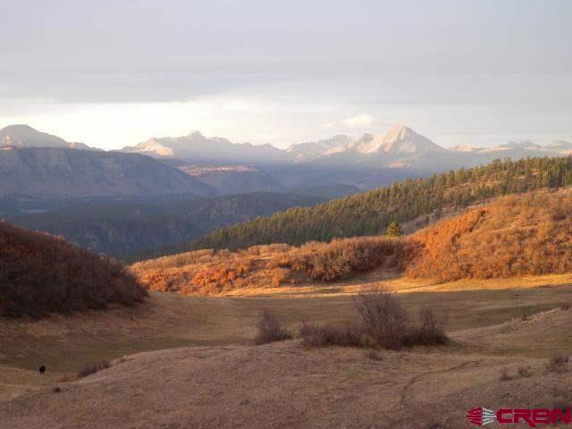 tbd Purple Sage, Durango, CO 81301 (MLS #732021) :: Durango Mountain Realty