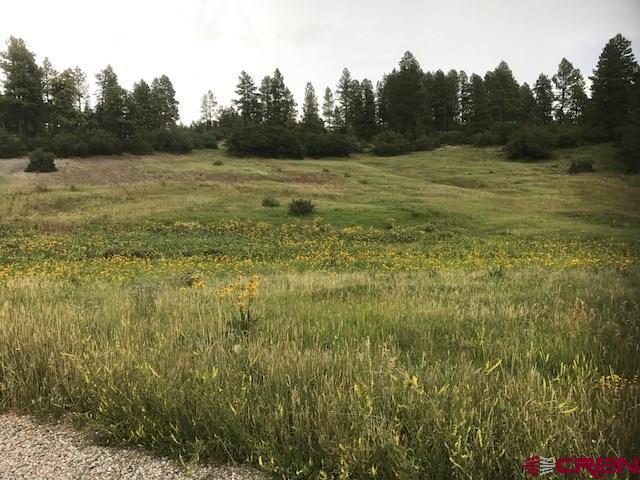 TBD Ciervo, Durango, CO 81301 (MLS #736171) :: Durango Mountain Realty