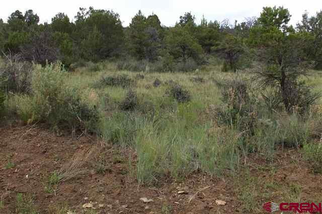 24850 Road V.5  Lot#3, Dolores, CO 81323 (MLS #738285) :: Durango Home Sales