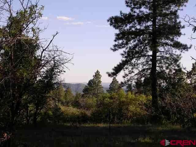 307 Nature's Way Court, Pagosa Springs, CO 81147 (MLS #739046) :: Durango Home Sales