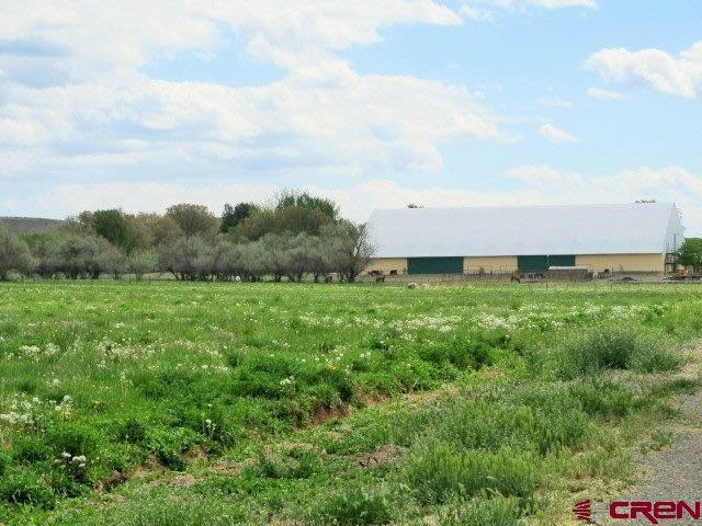 12628 Running Deer Road, Eckert, CO 81418 (MLS #740024) :: CapRock Real Estate, LLC