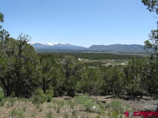 35995 Road J.6, Mancos, CO 81328 (MLS #740360) :: CapRock Real Estate, LLC