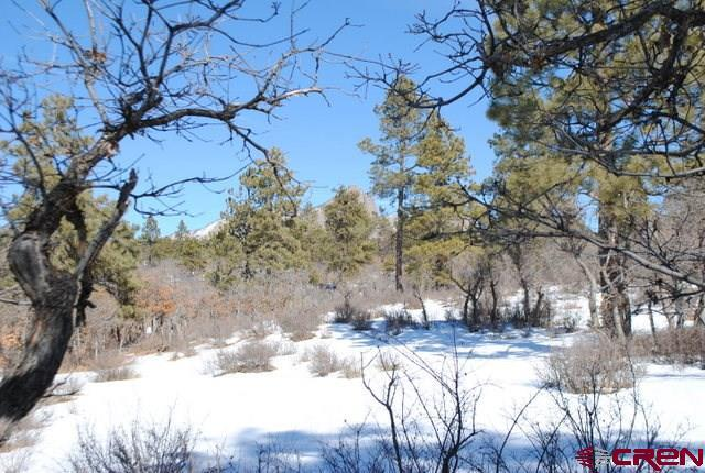 X Running Horse, Pagosa Springs, CO 81147 (MLS #741170) :: CapRock Real Estate, LLC