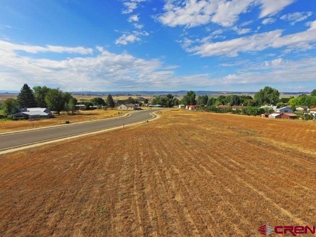 591 Juniper, Hotchkiss, CO 81419 (MLS #741198) :: Durango Home Sales