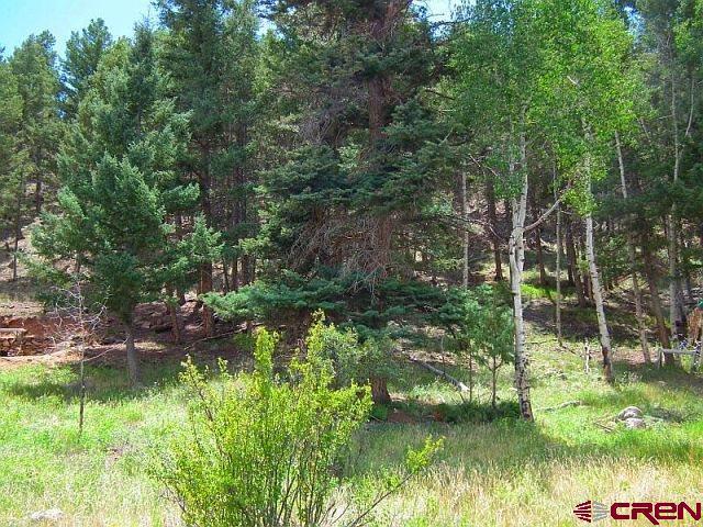 385 Aspen Dr, South Fork, CO 81154 (MLS #741711) :: Durango Home Sales