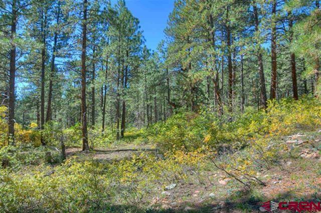 804 W Los Ranchitos, Durango, CO 81301 (MLS #741794) :: Durango Home Sales