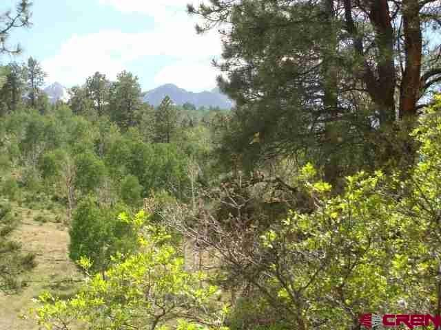 392 Forest Hill Road, Ridgway, CO 81432 (MLS #742477) :: Durango Home Sales