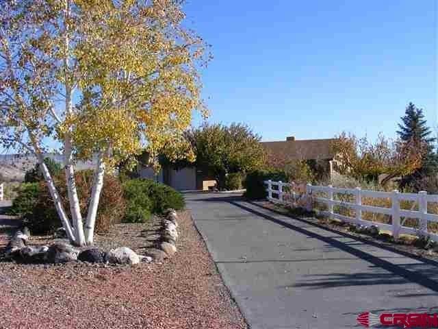 8636 Coffey Road, Austin, CO 81410 (MLS #742493) :: CapRock Real Estate, LLC