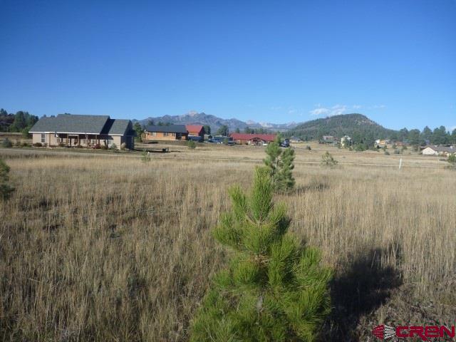 80 Saddle Circle, Pagosa Springs, CO 81147 (MLS #742616) :: Durango Home Sales