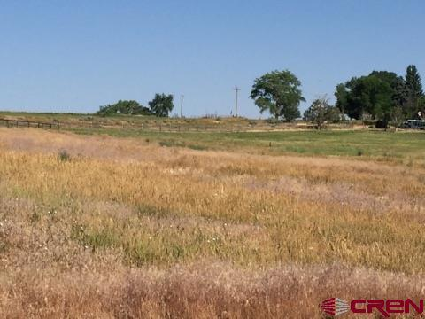 13913 (g) Road 25.1, Cortez, CO 81321 (MLS #742626) :: Durango Home Sales