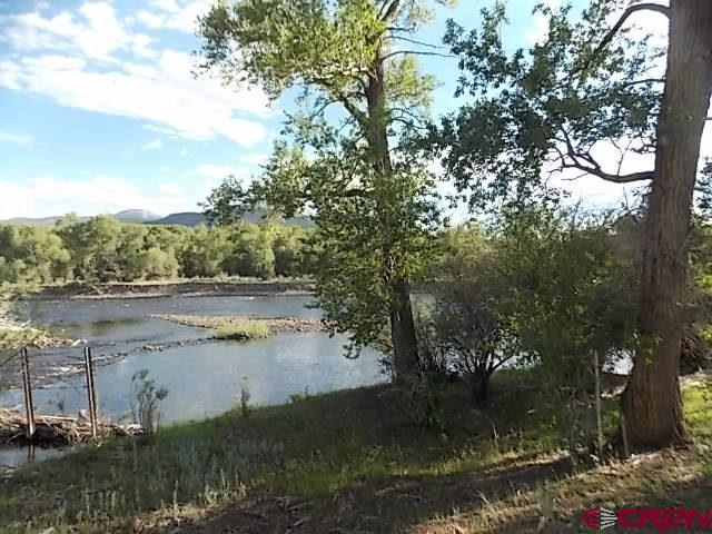 1994 River Island Dr., South Fork, CO 81154 (MLS #742732) :: Durango Home Sales