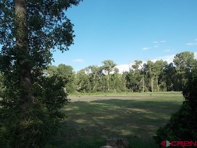 1862 River Island Dr., South Fork, CO 81154 (MLS #742733) :: CapRock Real Estate, LLC