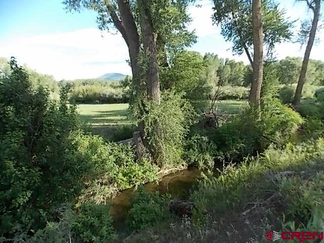 1738 River Island Dr., South Fork, CO 81154 (MLS #742735) :: Durango Home Sales
