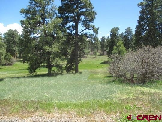 TBD Colonial Drive, Durango, CO 81301 (MLS #742892) :: Durango Home Sales