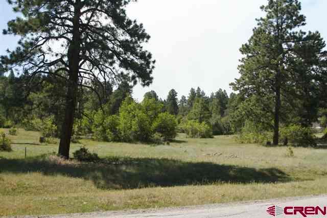 923 Hatcher Circle, Pagosa Springs, CO 81147 (MLS #743218) :: CapRock Real Estate, LLC