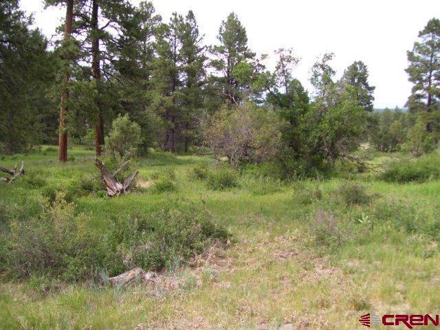 1421 Eight Mile, Pagosa Springs, CO 81147 (MLS #743224) :: CapRock Real Estate, LLC