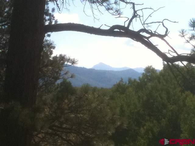 1309 Aspen Drive, Ridgway, CO 81432 (MLS #743358) :: CapRock Real Estate, LLC