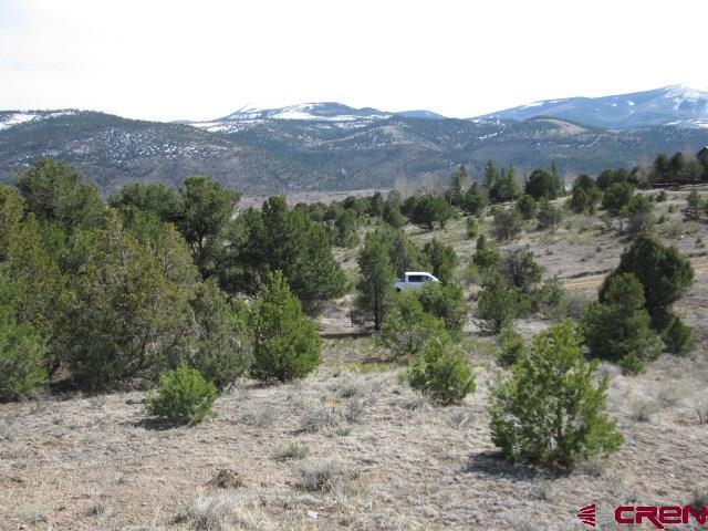 500 Kit Carson Rd, South Fork, CO 81154 (MLS #743580) :: Durango Home Sales