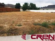 1746 Black Bear Street, Delta, CO 81416 (MLS #743605) :: CapRock Real Estate, LLC