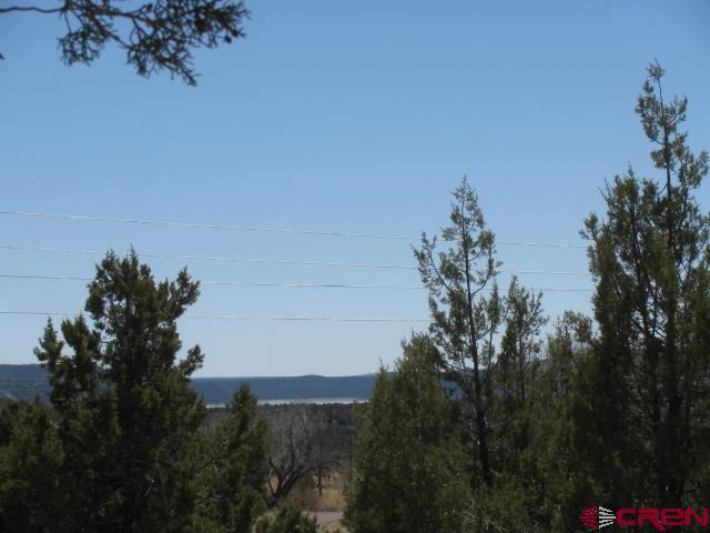 1759 Hwy 151, Arboles, CO 81121 (MLS #743855) :: Durango Home Sales
