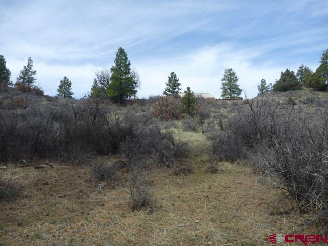 640 Haystack Circle, Pagosa Springs, CO 81147 (MLS #743950) :: Durango Home Sales