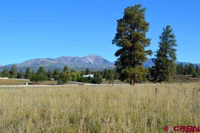 4661 Cr 141, Durango, CO 81303 (MLS #744013) :: Durango Mountain Realty