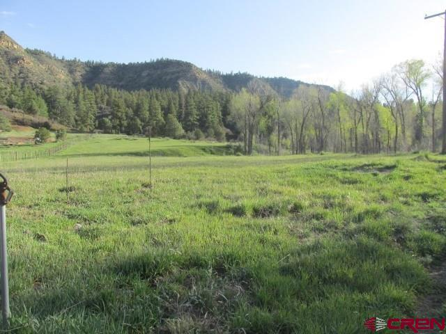 X County Rd 335, Pagosa Springs, CO 81147 (MLS #744206) :: The Dawn Howe Real Estate Network | Keller Williams Colorado West Realty