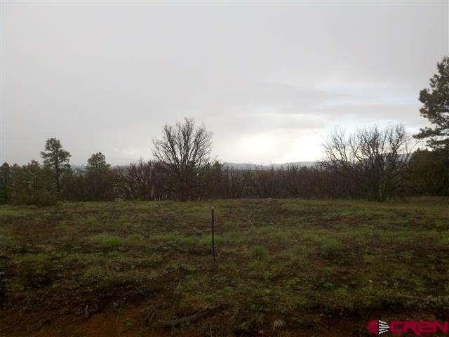 15 Oxbow Circle, Pagosa Springs, CO 81147 (MLS #744433) :: CapRock Real Estate, LLC