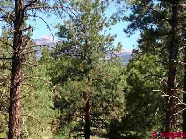 7X Hidden Valley Drive, Pagosa Springs, CO 81147 (MLS #744661) :: Durango Home Sales