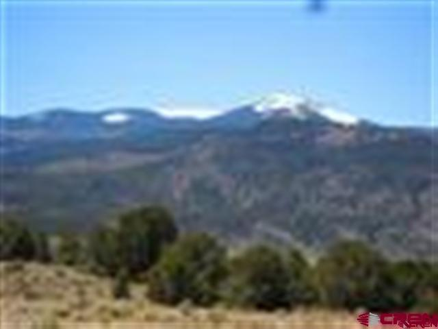 218 Expedition, South Fork, CO 81154 (MLS #745206) :: CapRock Real Estate, LLC