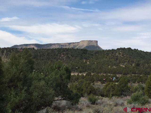 9845 Road 36.7, Mancos, CO 81328 (MLS #745247) :: CapRock Real Estate, LLC