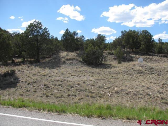 TBD Hwy 151, Arboles, CO 81121 (MLS #745267) :: Keller Williams CO West / Mountain Coast Group