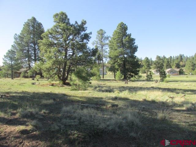 433 Morro Circle, Pagosa Springs, CO 81147 (MLS #745589) :: Durango Home Sales