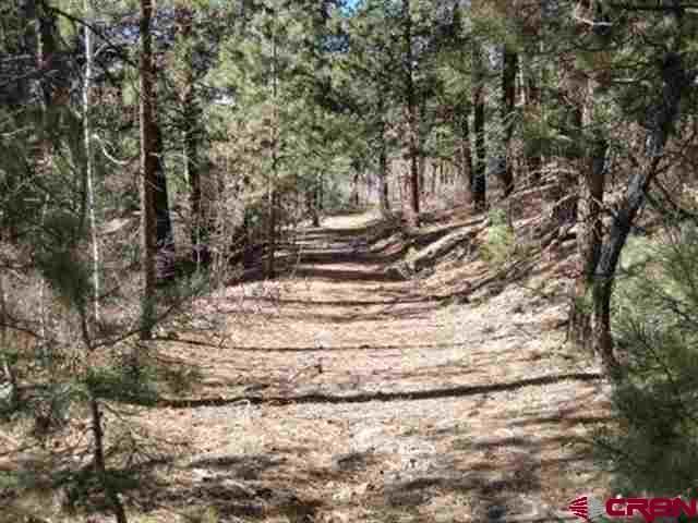 95 Mark Trail, Durango, CO 81301 (MLS #746223) :: Durango Mountain Realty
