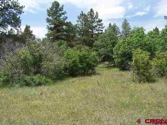 464 Dutton Drive, Pagosa Springs, CO 81147 (MLS #746615) :: CapRock Real Estate, LLC