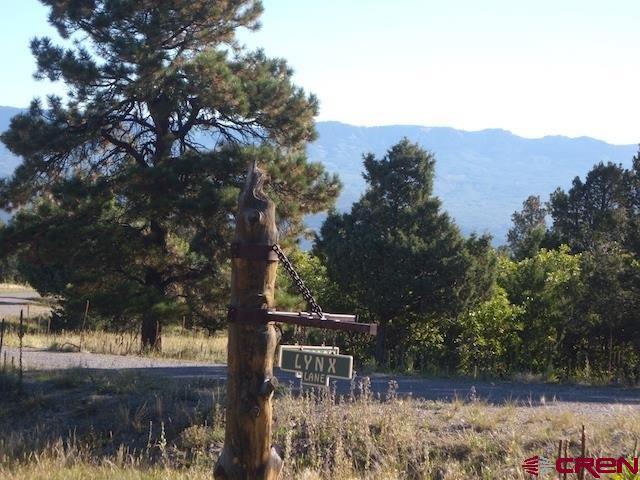 1318 Marmot Drive, Ridgway, CO 81432 (MLS #746660) :: Durango Home Sales