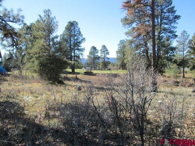 131 E Golf Place, Pagosa Springs, CO 81147 (MLS #747018) :: Durango Home Sales
